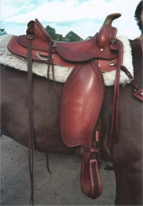 My saddle on Logan