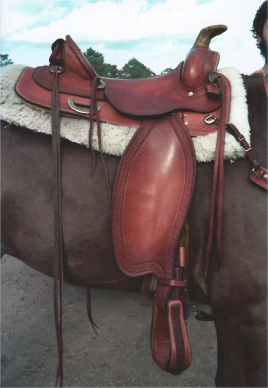 My saddle on Logan