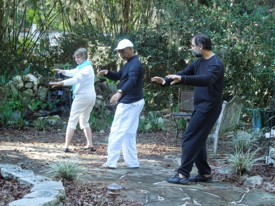 Don and Kathryn Coleman taught me Tai Chi in Madison, Wisconsin.